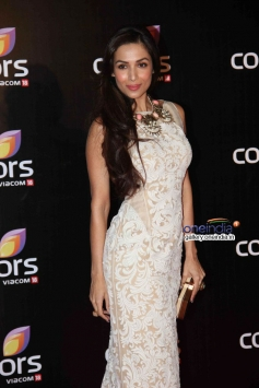 Malaika Arora Khan at Colors channel party 2014