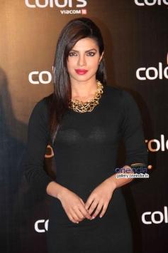 Priyanka Chopra at Colors channel party 2014