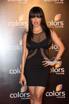 Sana Khan at Colors channel party 2014