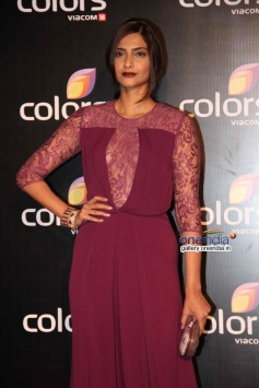 Sonam Kapoor at Colors channel party 2014