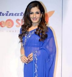 Raveena Tandon at Stree Shakti Women Awards 2014