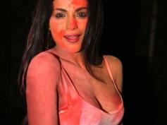 Veena Maliks Controversial Bollywood Journey