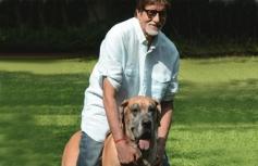 Amitabh Bachchan poses with his pet dog