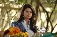 Arya Chitra
