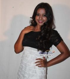 Malli Movie Press Meet