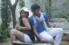 Sanjana Naidu and Nagarjuna in Kannada Movie Premarpane