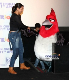 Sonakshi Sinha at Rio 2 film press conference