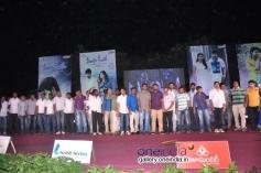 Teeyani Kalavo Movie Audio Release