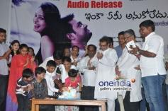 Inka Emi Anukoledu Audio Launch