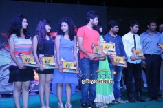 Nenu Naa Friends Platinum Disc Function Images
