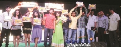 Nenu Naa Friends Platinum Disc Function Photos