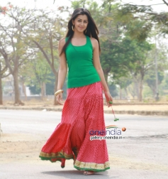 Nikki Galrani in Kannada Movie Ajith