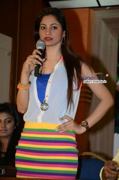 Shilpi Sharma at Green Signal Press Meet