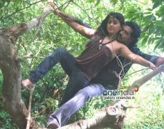 Telugu Movie Jabaali Pics