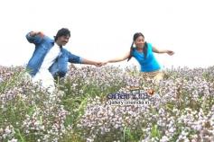 Telugu Movie Jabaali Stills