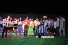 Telugu Movie Nenu Naa Friends Platinum Disc Function Pics