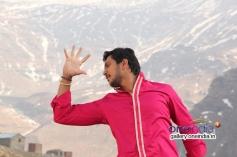 Ajay Rao in Rose