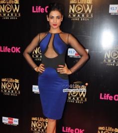 Sonal Chauhan at Life Ok Now Awards 2014