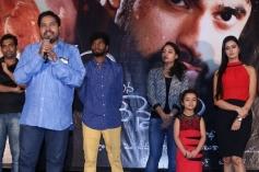 Telugu Movie Adavi Kachina Vennela Audio Launch Images