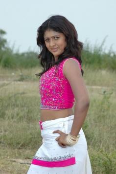 Telugu Movie Aggi Ravva Photos