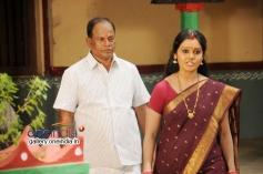 Telugu Movie  Telangana Vijayam Images