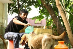Dhanush still from Velai Illa Pattathari Movie