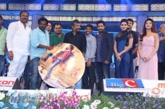 Rabhasa Audio Launch