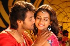 Aadi and Rakul Preet Singh