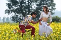 Sundeep Kishan and Surabhi