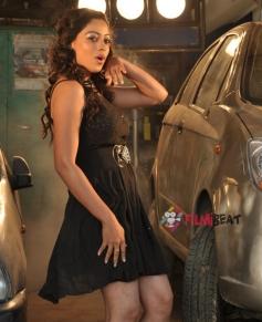 Anjali Rao