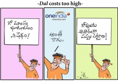Dal price goes up