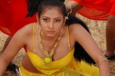 Sindhu Tholani