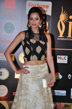 Radhika  at IIFA Utsavam Awards 2016
