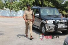 Rudra IPS