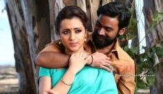 Trisha and Dhanush
