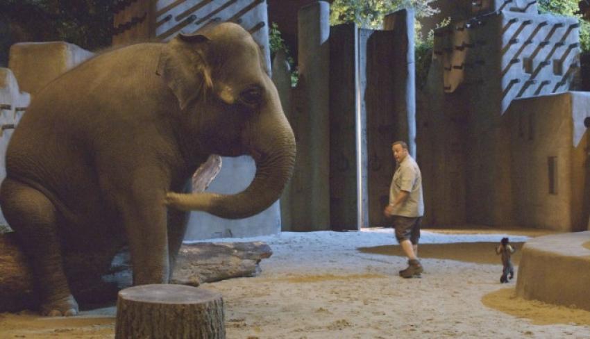 Zookeeper Photos