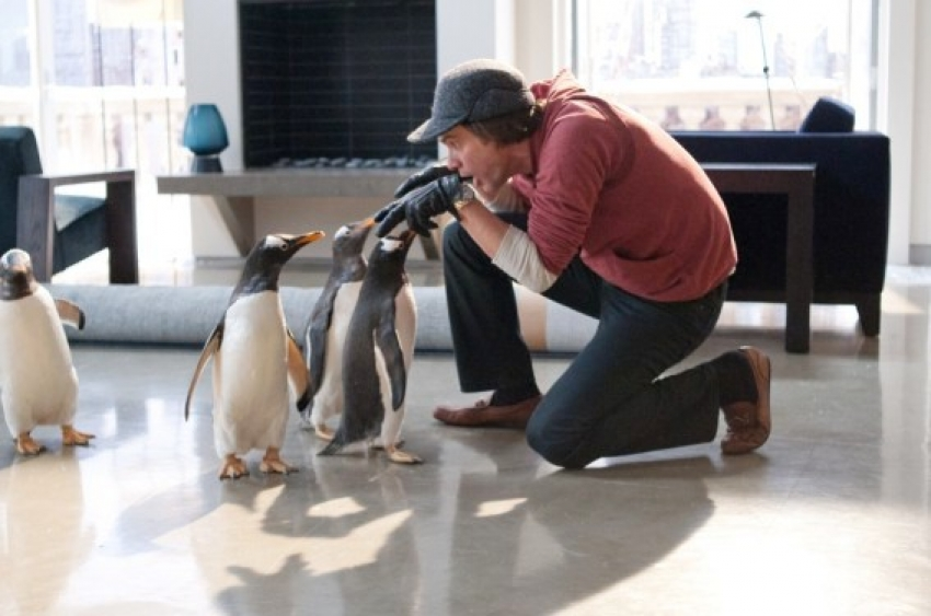Mr. Poppers Penguins Photos