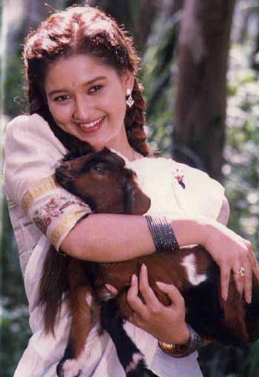 Laila (Tamil Actress) Photos