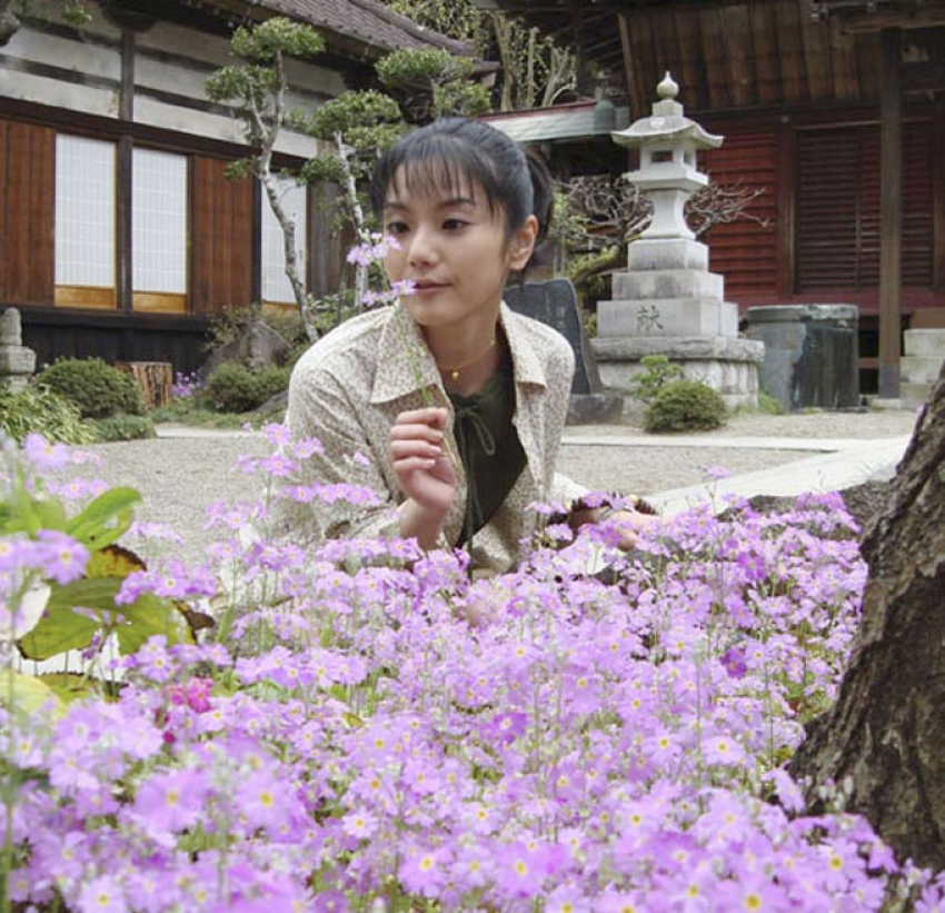 The Japanese Wife Photos