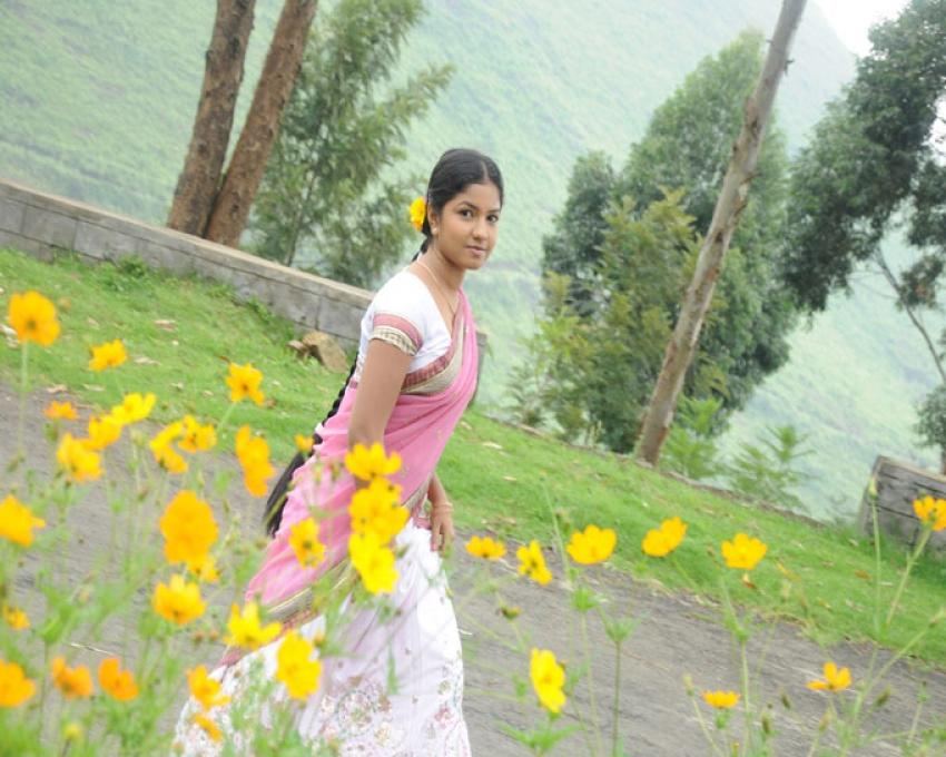 Saplin Samandhi Photos
