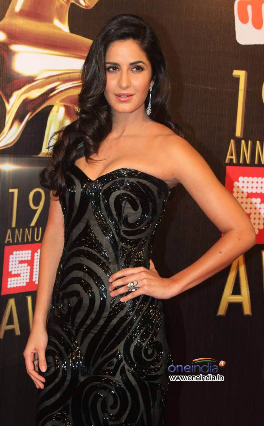 19th Annual Screen Awards 2013 Photos - FilmiBeat