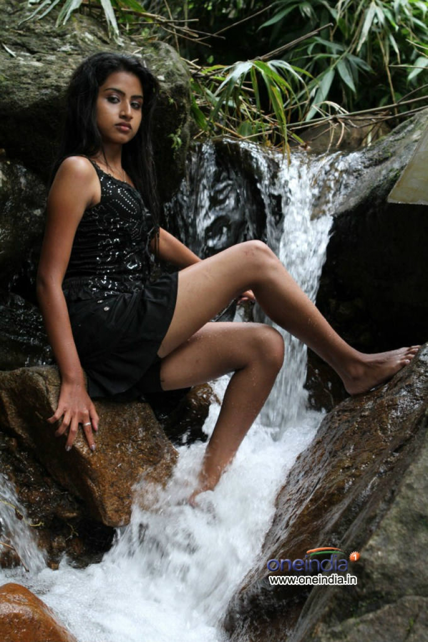 Iddaru Bhamala Kougili Photos