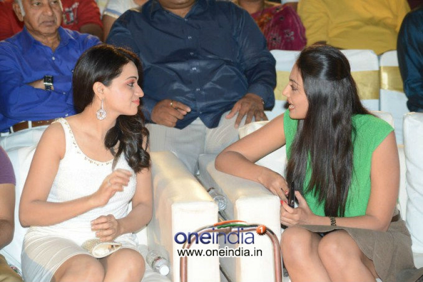 Jai Sriram Audio Launch Photos