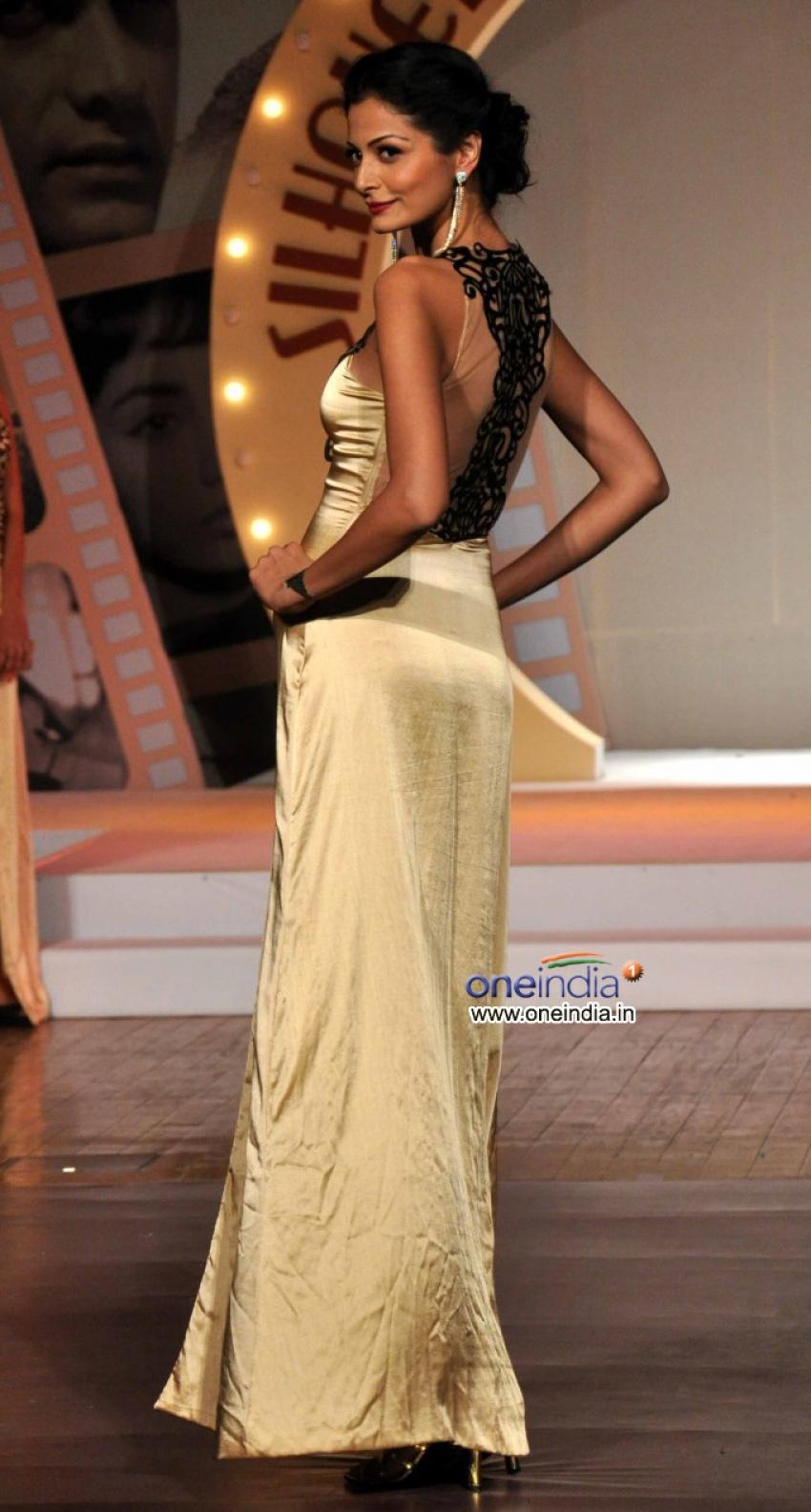 Silhouettes 2013 Bollywood Bytes Photos