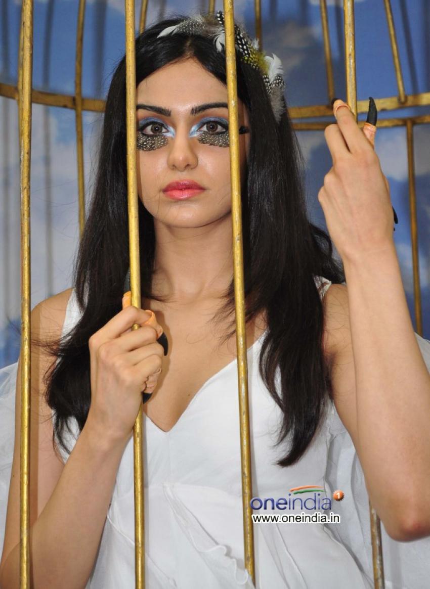 Adah Sharma says Birds Don't Belong in Cages Photos