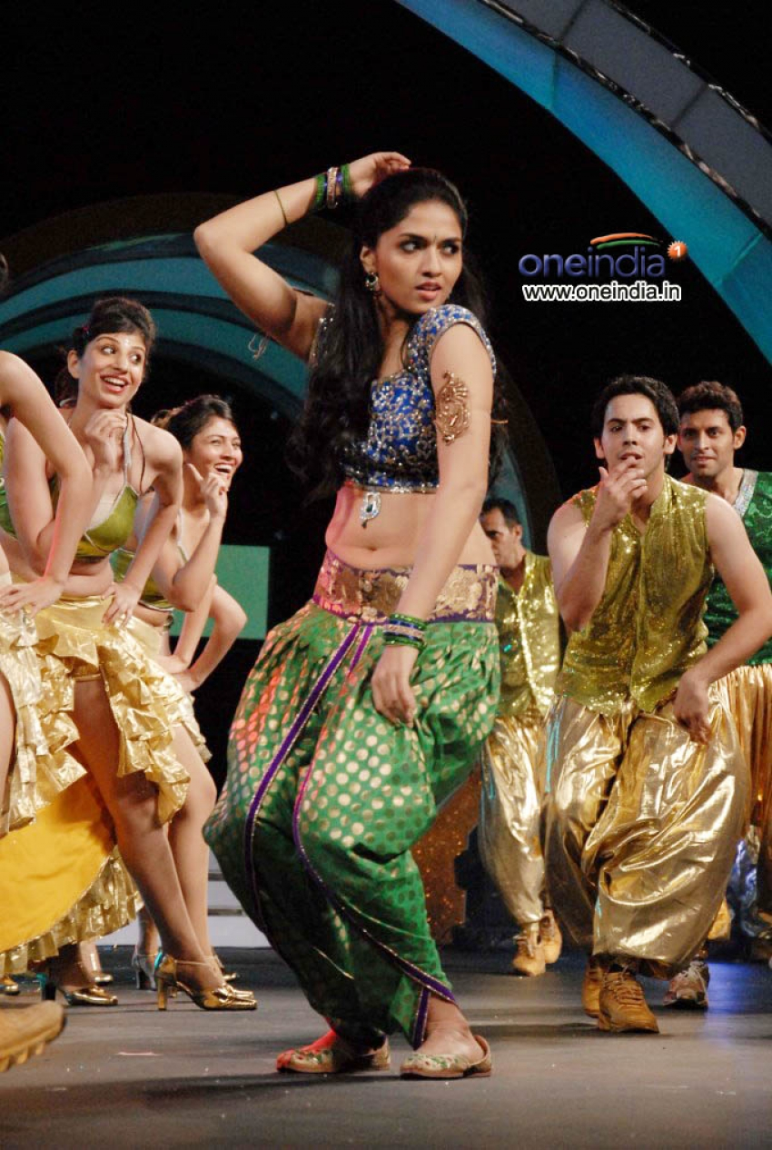 South Indian Filmfare Awards 2013 Photos
