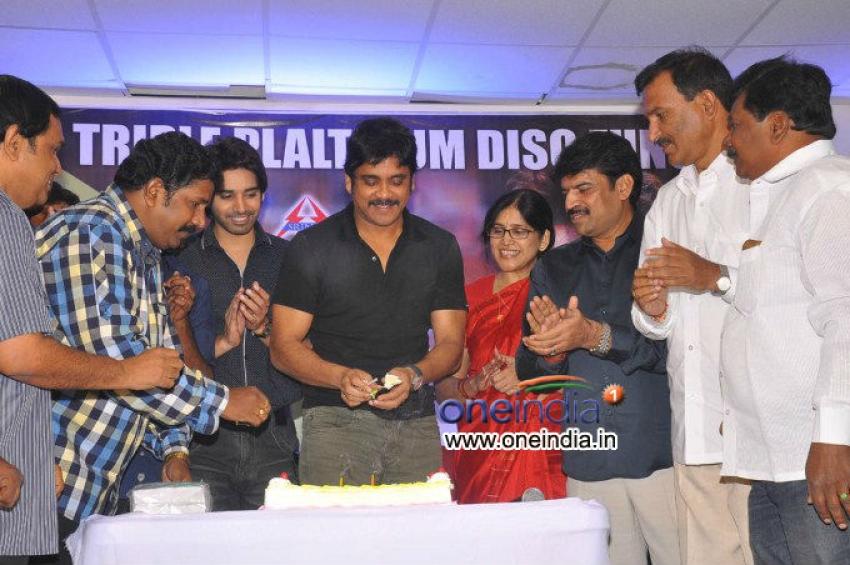 Nagarjuna Birthday Celebrations Photos