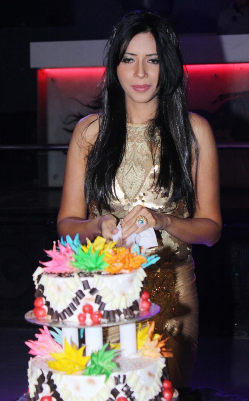 Rozlyn Khan 25th Birthday Bash Photos