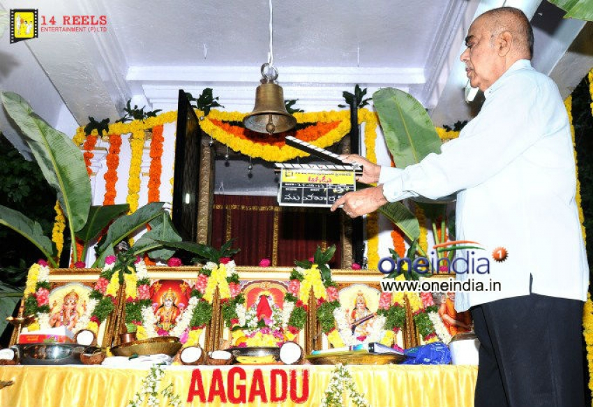 Aagadu Movie Launch Photos
