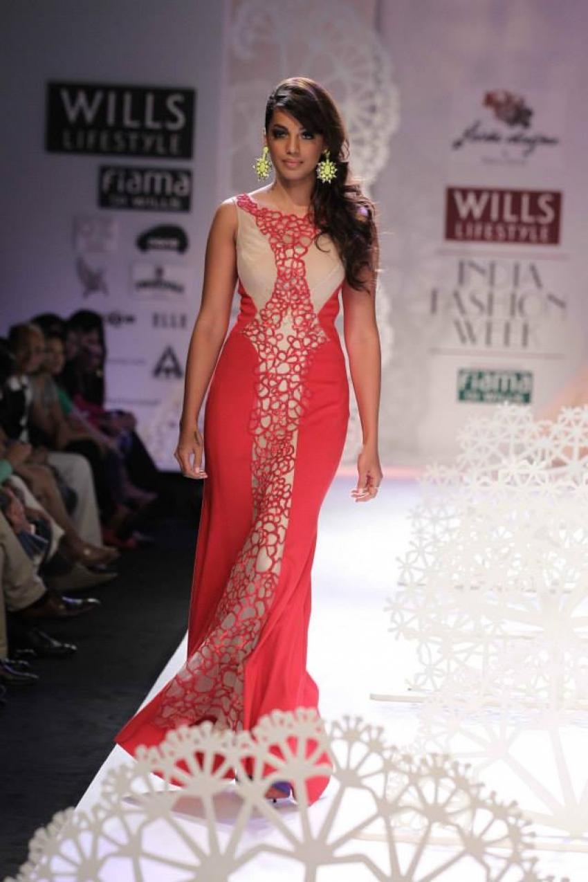 Wills India Fashion Week Spring/Summer 2014 Photos